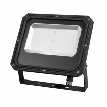 Proiector LED profesional 100W, 5000K, IP65